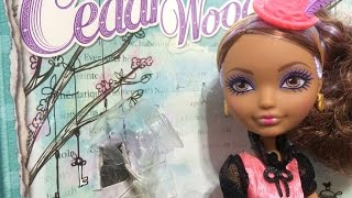 Cedar Wood Hat Tastic Tea Party Review - Ever After High Doll