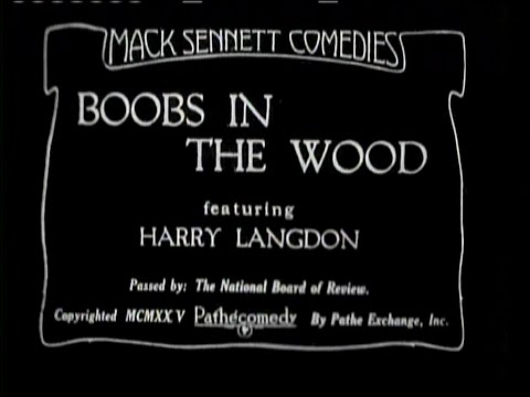 1925 - Boobs in the Wood (Rótulos en Castellano)