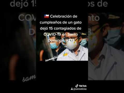 🇨🇱 Celebración de cumpleaños de un gato dejó 15 contagiados de COVID-19 en Santo Domingo