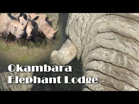 Okambara, out of africa feeling
