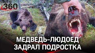Медведь съел подростка-шерпа в красноярском лесу. Охотоведы: люди сами прикормили хищников