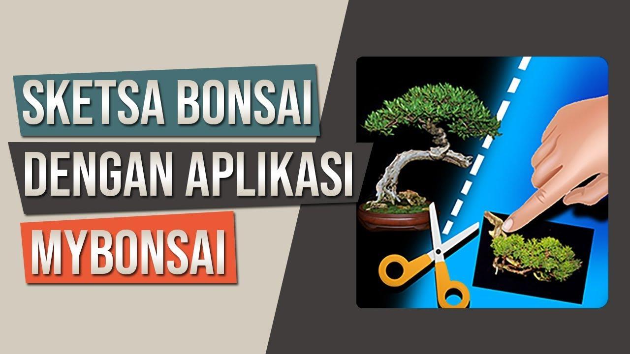 Cara Membuat Sketsa Bonsai Dengan Aplikasi MyBonsai