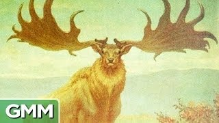 Repeat youtube video 7 Extinct Animals We Wish Were Brought Back to Life