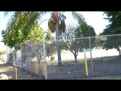 "San Pedro "" THIS IS A GOV. FACILITY"" 1ST Amend Audit, w/FOXY as back up"