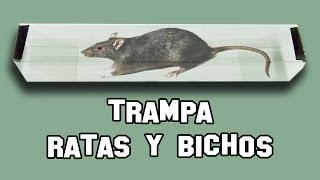 Trampa para ratones y ratas viyoutube - Como hacer trampas para ratones ...