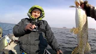 Ловля щуки на джиг 2019. Ловля щуки с МИХАЛЫЧЕМ. Джиговая ловля от Артурыча / Ловля с лодки
