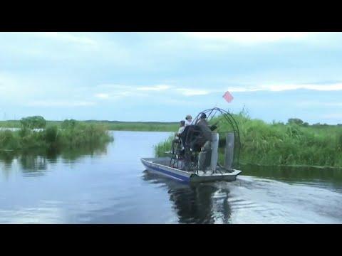 Florida's Alligator Hunting Season Begins