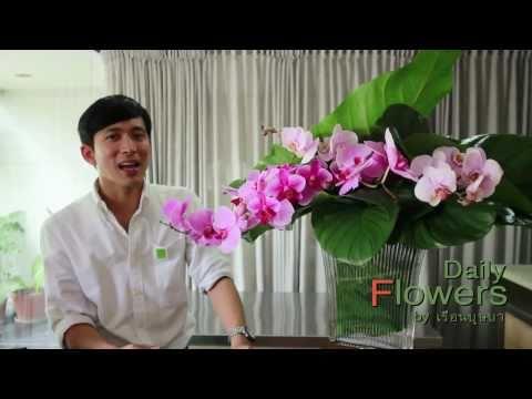 Daily Flowers 23-จัดดอกไม้ในแจกันขนาดใหญ่