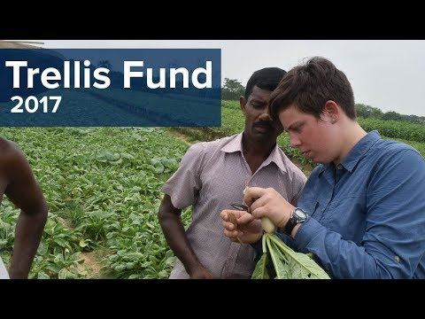 Recruiting grad students for Trellis Fund fellowships