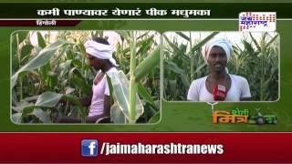 Sheti Mitra, sweet corn farming in hingoli - seg 1
