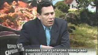 23 bl 3 cuidados com a catapora paulo peanha infectologista 27 10 2010 flv