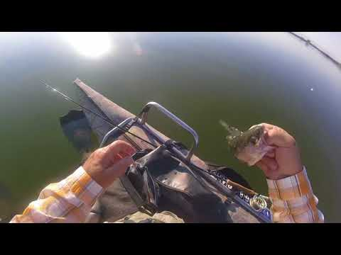 Fly Fishing | Duck Valley | Labor Day | Nevada |