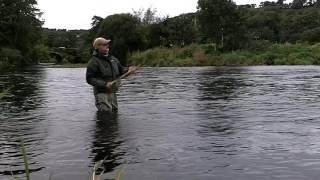 Salmon Fishing Ireland 2016.