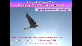 Falcon 30iV  : Speedy and stable Good Flight&Gliding thumbnail