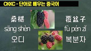 단어로 배우는 중국어 - 0359 SangShen Fu…