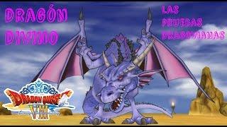 Dragon Quest VIII el periplo del rey maldito Pt.64:Las pruebas dragovianas (dragón Divino)