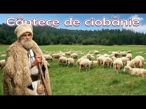 Sunt cioban cu multe oi - Colaj jiene si cantece de pastorit