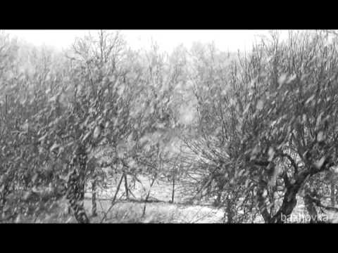 BORIS AVEZOV & OLEG SHTEINBERG Часть№-1