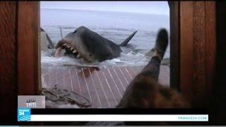 الصورة النمطية عن أسماك القرش في
