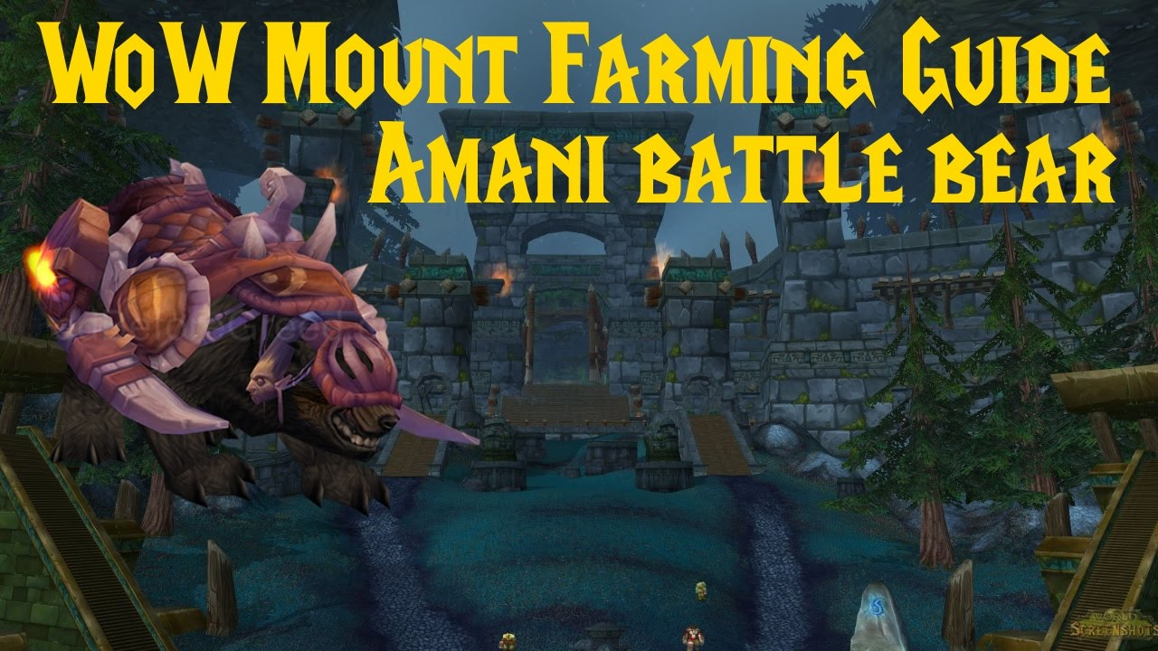 wow mount farming guide amani battle bear dansk youtube