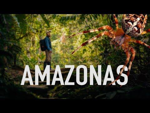 Cuatro días en el AMAZONAS peruano: Parque del Manu - Viaje a Perú #6