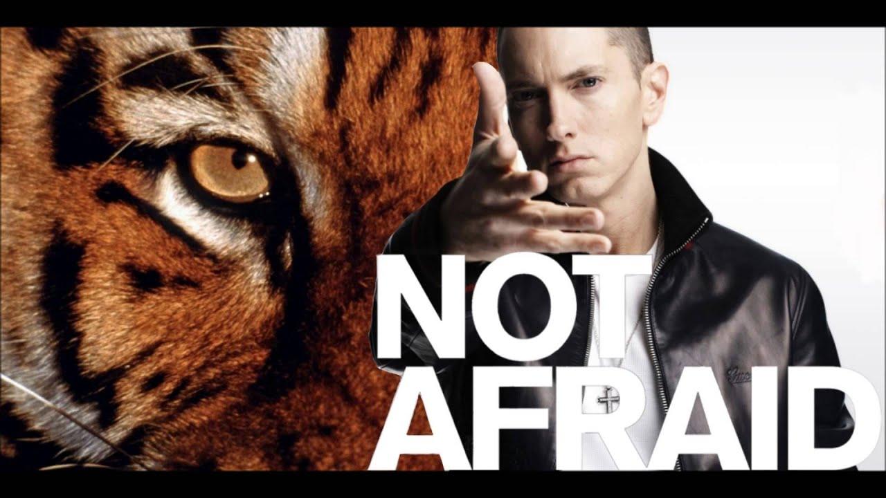 Eye of the Tiger (Eminem - Not Afraid Remix) - YouTube