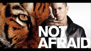Eye of the Tiger (Eminem - Not Afraid Remix)
