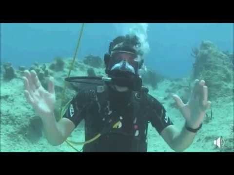Wild Earth : DiveLive with Graham Wallington at Grand Cayman in the Caribbean  April 03, 2018