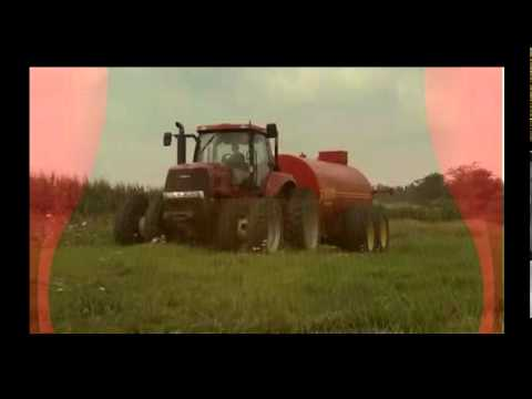Farmers Go Green with Pig Manure