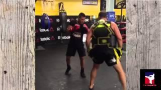 Anthony Pettis training 2016. Awesome kicks and striking