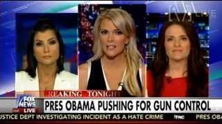 Dana Loesch & Some Lib Chick Debate Gun Control - The Kelly File
