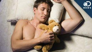 Why You Still Love Your Teddy Bear