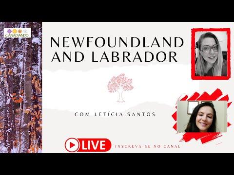 PROVÍNCIAS DO ATLÂNTICO: COMO É A VIDA EM NEWFOUNDLAND AND LABRADOR