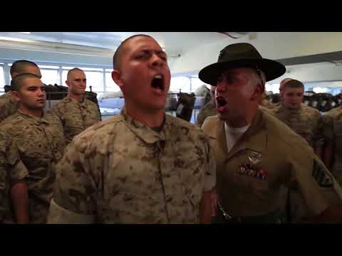 Funniest Drill Sergeants In One Video