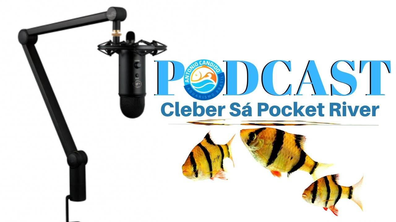 ENTREVISTA COM CLEBER SÁ   POCKET RIVER AQUAPAISAGISMO   PODCAST AQUARISMO