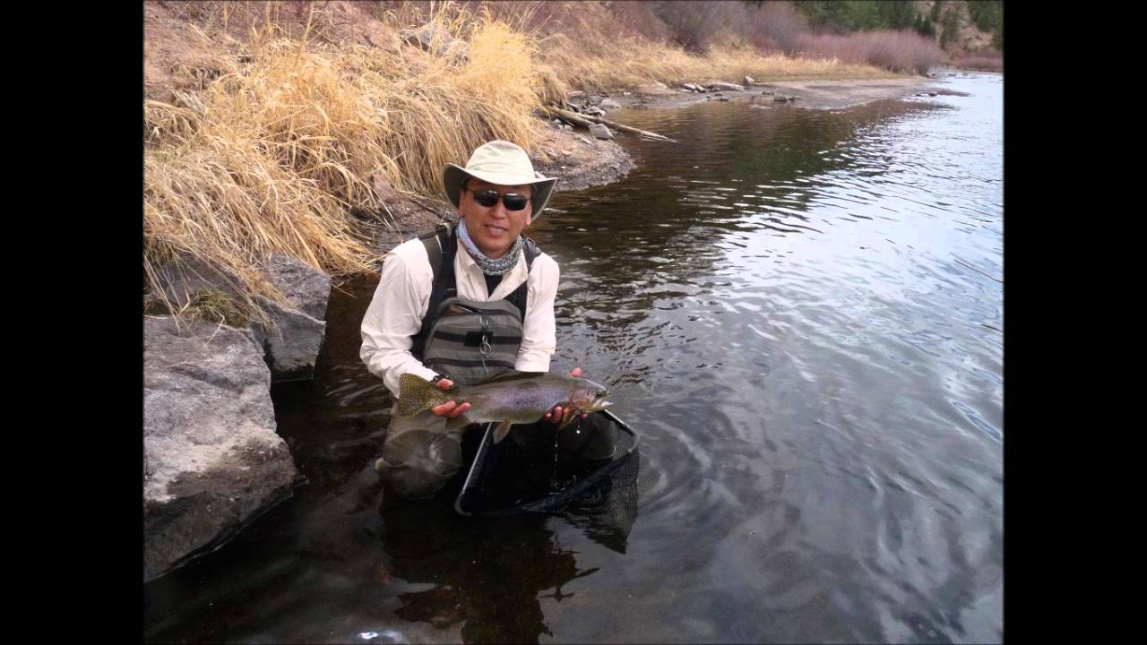 Big trout south platte river fly fishing deckers colorado for South platte river fishing