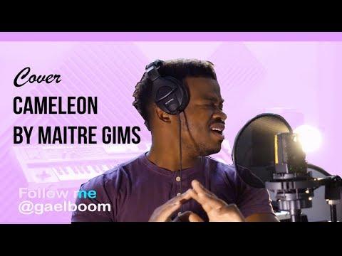 Maître Gims - Caméléon Cover by GAEL BOOM (REMIX)