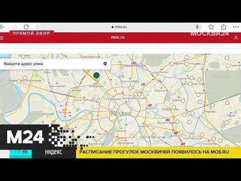 Расписание прогулок москвичей появилось на Mos.ru - Москва 24