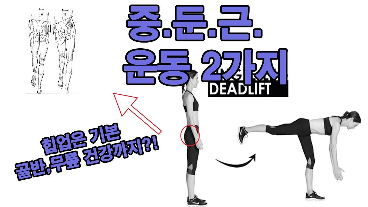중둔근 운동 2가지 [힙업, 골반 건강, 무릎 건강]