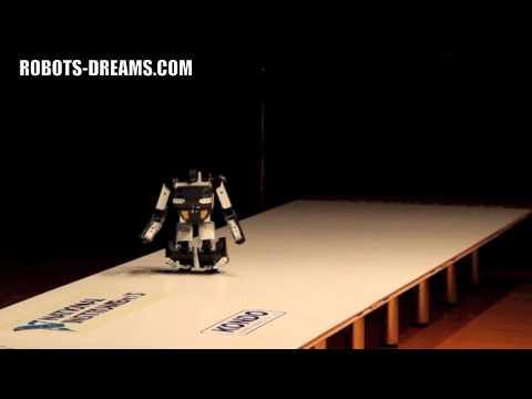 ROBO-ONE 21: Brave Robot Transformer