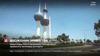 Инвестиции ОАЭ в экономику России могут превысить миллиард долларов