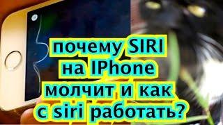 почему SIRI на IPhone 4 5c 5s 6 6s молчит и как с siri работать? Русская сири siri и английская тес