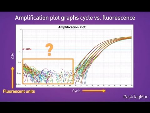Baselines in Real-Time PCR -- Ask TaqMan®: Ep. 5