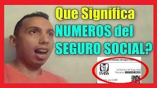 Que significan los Números del SEGURO SOCIAL (NSS) I Importante! 2019