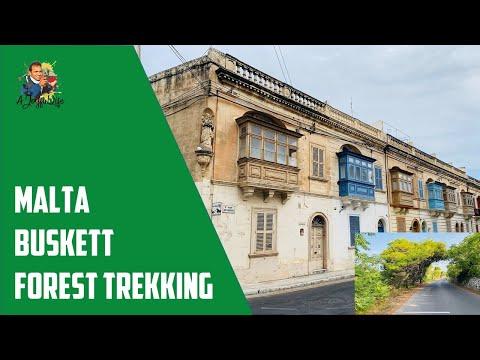 Malta Buskett Forest Trekking