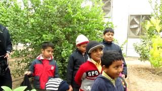 our kids in kuwait farm