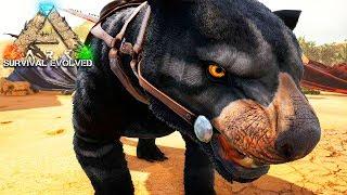 МОД на Поиск Динозавров и Сумчатый Лев в ARK Survival Archaic Ascension #10