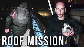 GEWONDE VOGEL GERED op DAK tijdens ROOF MISSION!