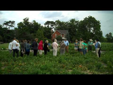 President's Choice / Stokes Seeds 2011 Summer Luncheon