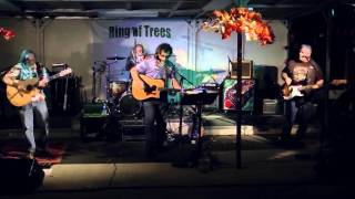 Ring Of Trees - Live The Light